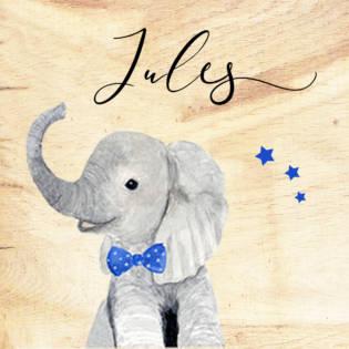 box elephanteau