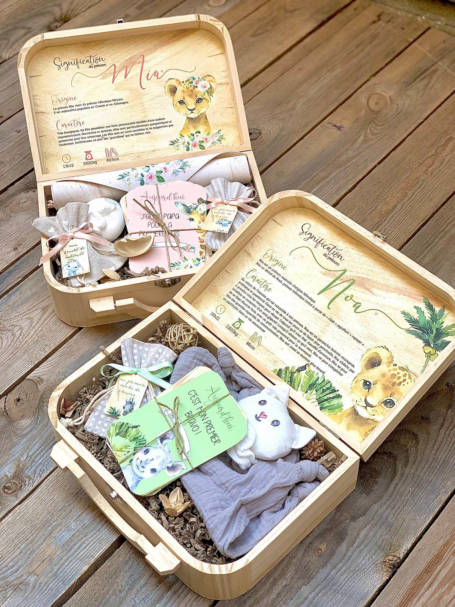 coffret cadeau de naissance valise maternité lionne bébé avec cartes étapes