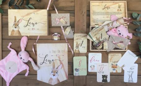 cadeau de naissance thème lapin avec les cadeaux : cartes étapes, doudou, fanion et sachet à dragées